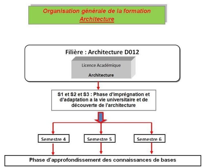 photo organisation generale archi licence
