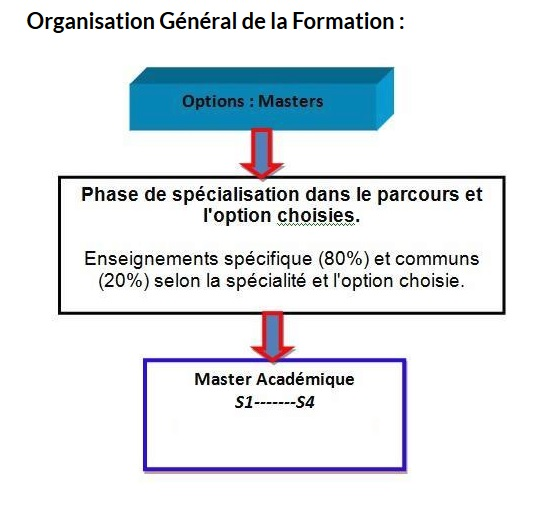 organisation de la formation master